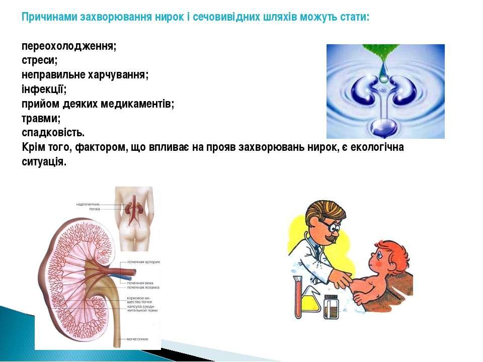 Причинами захворювання нирок і сечовивідних шляхів можуть стати: переохолодже...