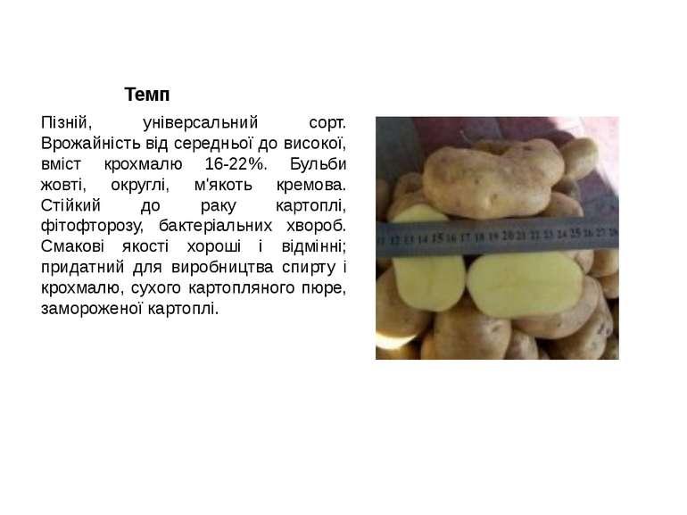 Темп Пізній, універсальний сорт. Врожайність від середньої до високої, вміст ...