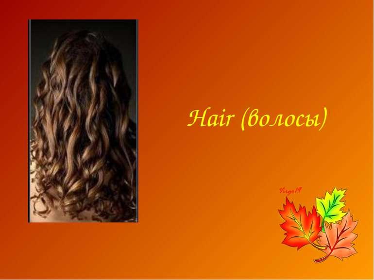 Hair (волосы)