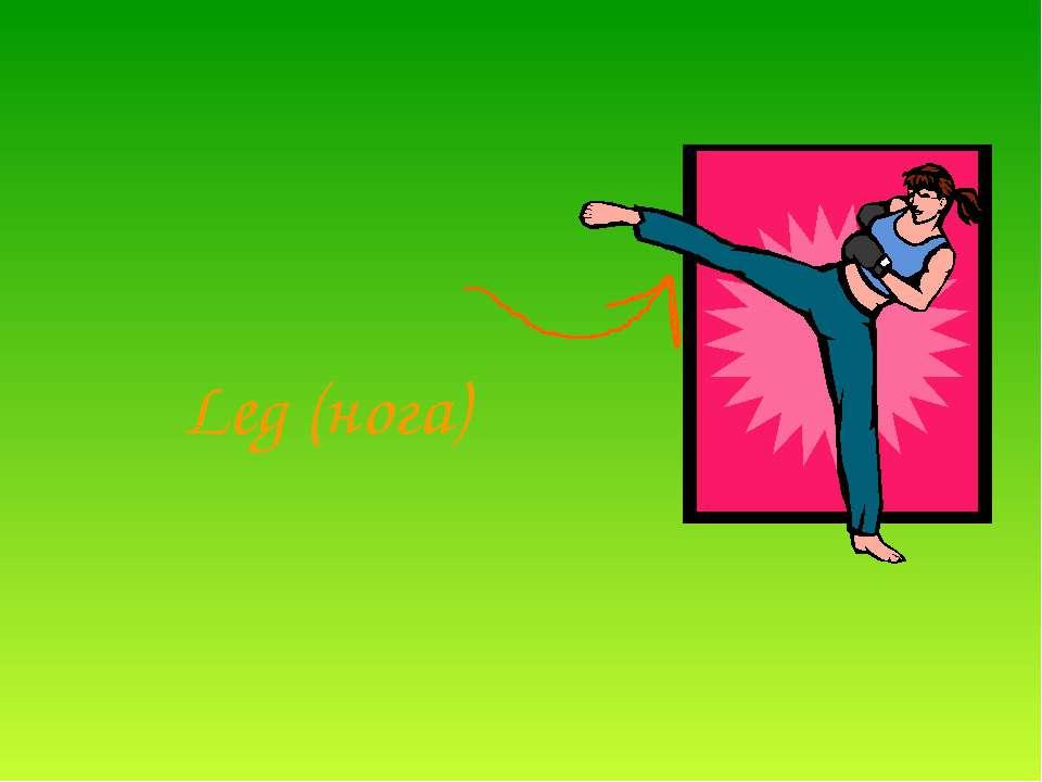 Leg (нога)