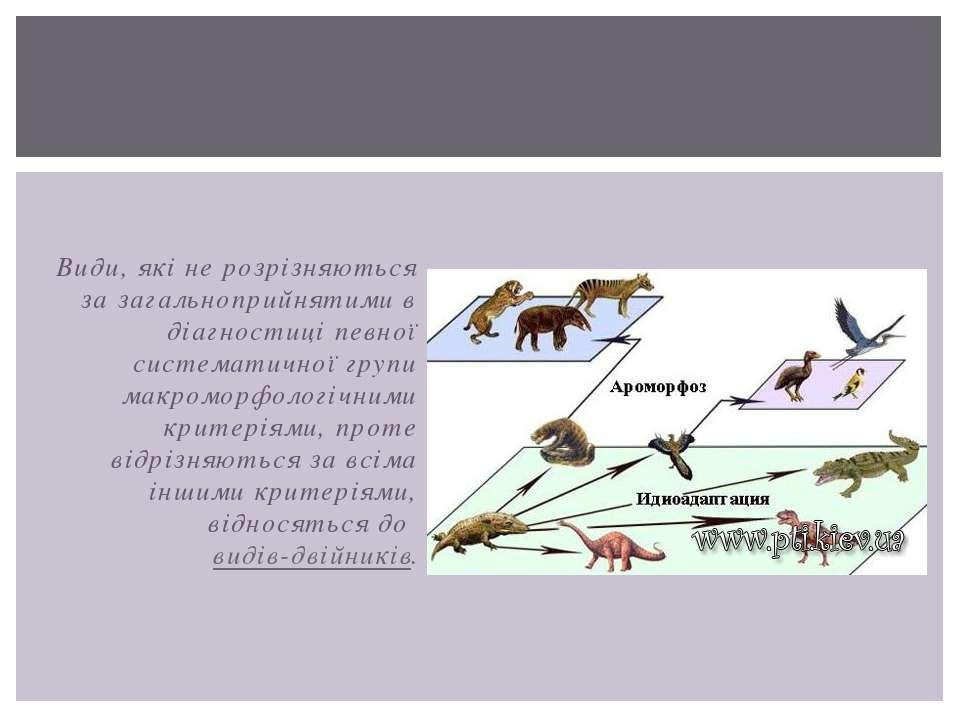 Види, які не розрізняються за загальноприйнятими в діагностиці певної система...