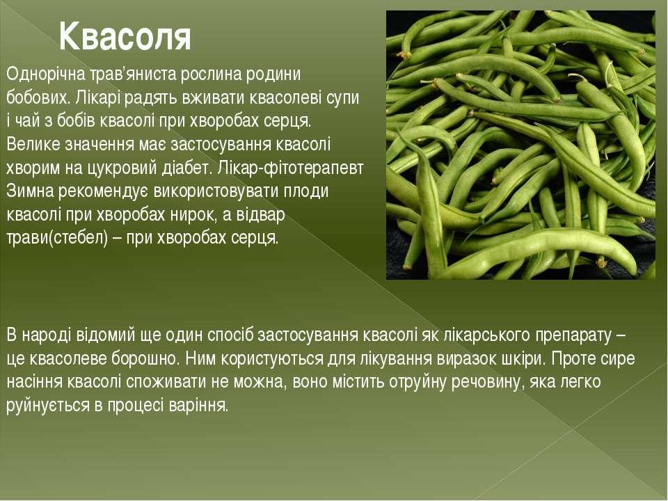 Квасоля Однорічна трав'яниста рослина родини бобових. Лікарі радять вживати к...