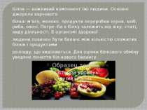 Білок — важливий компонент їжі людини. Основні джерела харчового білка: м'ясо...