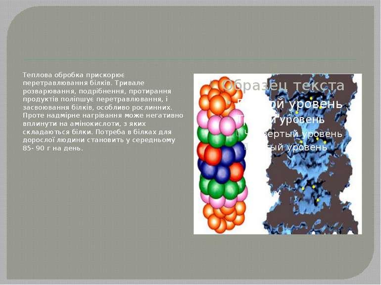 Теплова обробка прискорює перетравлювання білків. Тривале розварювання, подрі...