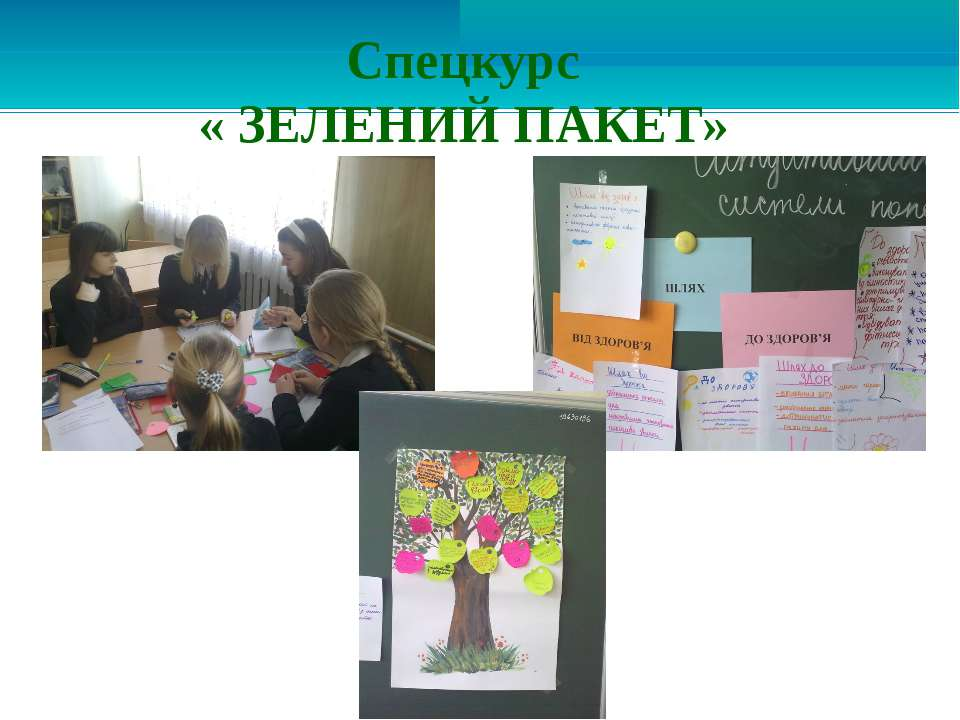 Спецкурс « ЗЕЛЕНИЙ ПАКЕТ»