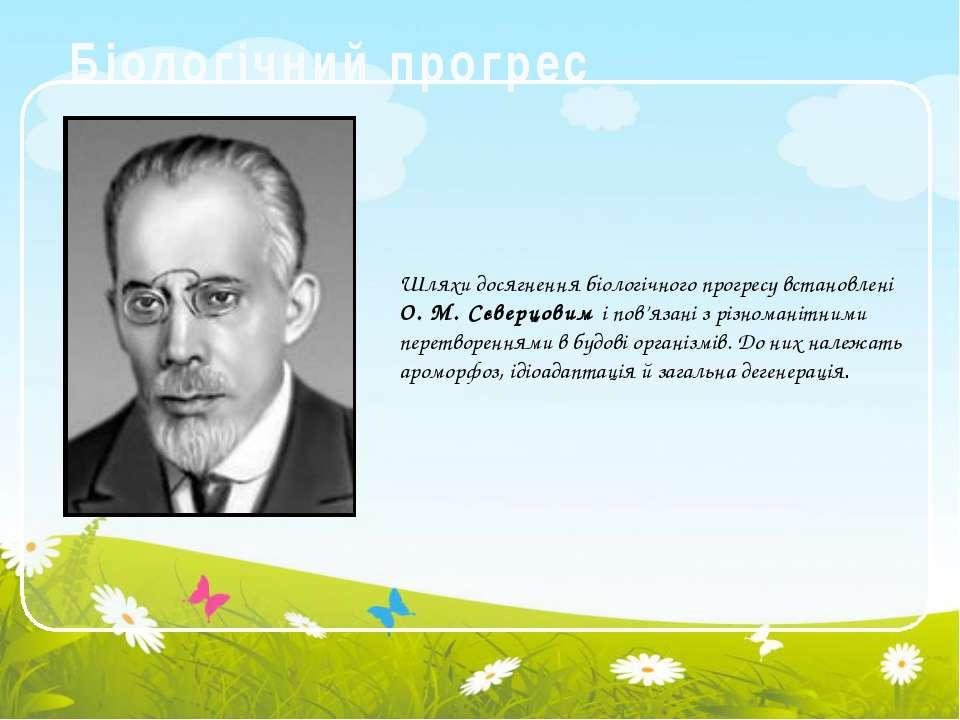 Біологічний прогрес Шляхи досягнення біологічного прогресу встановлені О. М. ...