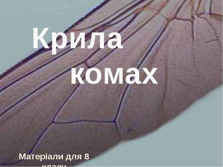 Крила комах Матеріали для 8 класу