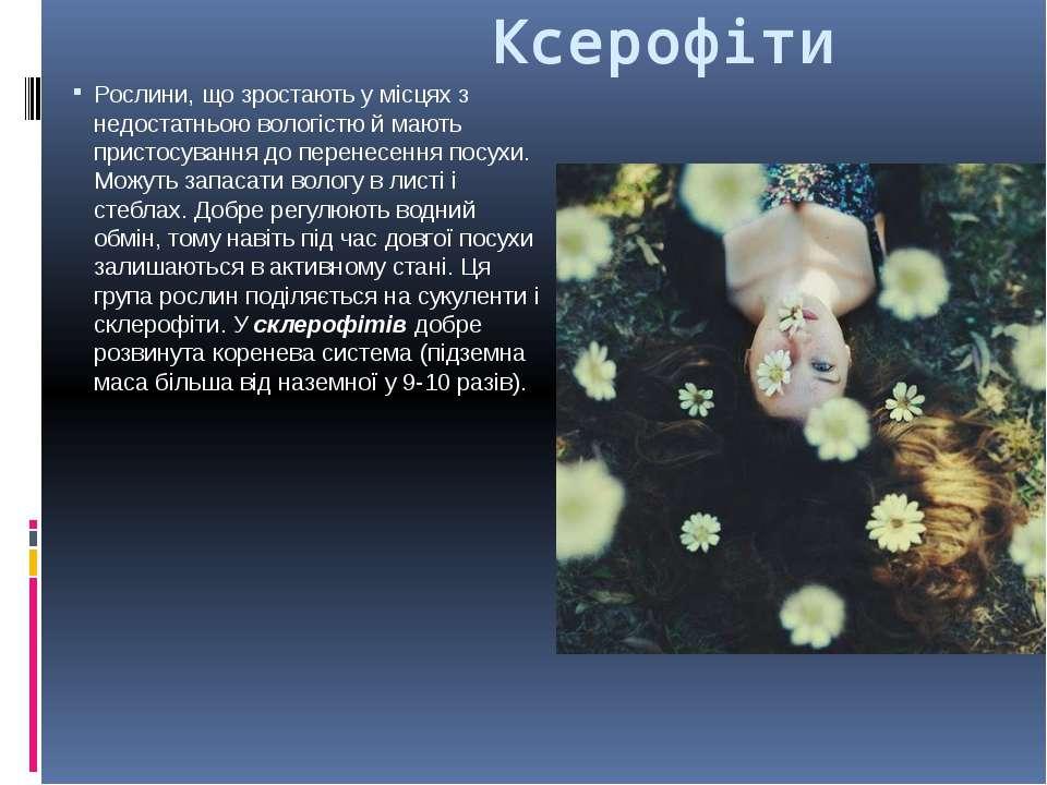 Ксерофіти Рослини, що зростають у місцях з недостатньою вологістю й мають при...