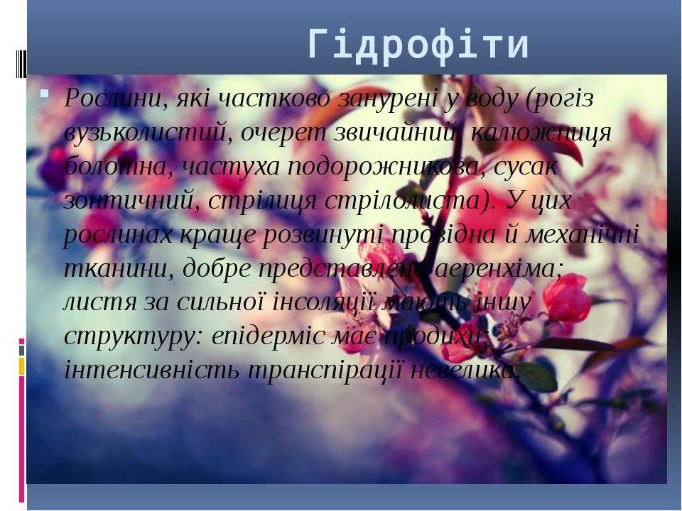 Гідрофіти Рослини, які частково занурені у воду (рогіз вузьколистий, очерет з...