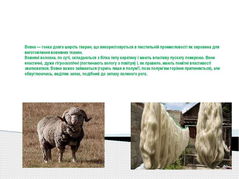 Вовна — тонка довга шерсть тварин, що використовується в текстильній промисло...