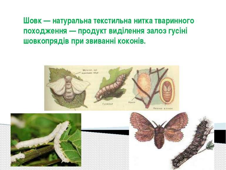 Шовк — натуральна текстильна нитка тваринного походження — продукт виділення ...
