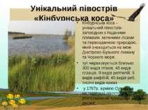 Унікальний півострів «Кінбурнська коса» Кінбурнська коса – унікальний півостр...