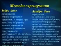 Методи схрещування Інбри динг - схрещування близькоспоріднених організмів. У ...