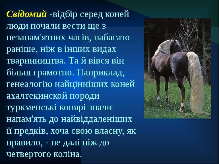 Свідомий -відбір серед коней люди почали вести ще з незапам'ятних часів, наба...