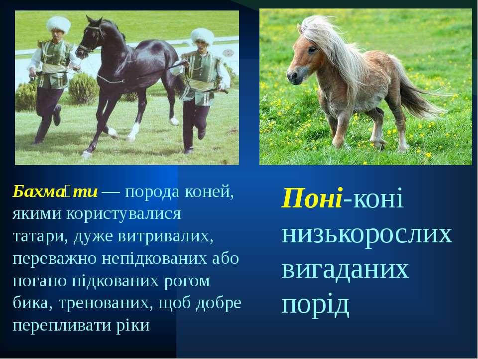 Поні-коні низькорослих вигаданих порід Бахма ти — порода коней, якими користу...