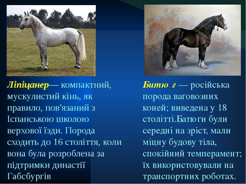 Битю г — російська порода ваговозних коней; виведена у 18 столітті.Батюги бул...