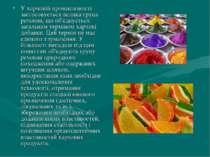 У харчовій промисловості застосовується велика група речовин, що об'єднується...