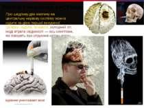 Мозок і нервова система Про шкідливу дію нікотину на центральну нервову систе...