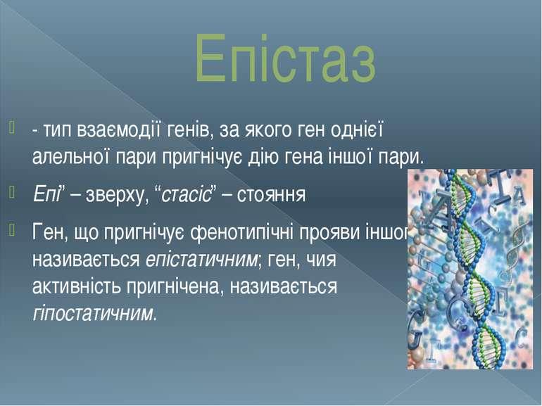 Епістаз - тип взаємодії генів, за якого ген однієї алельної пари пригнічує ді...