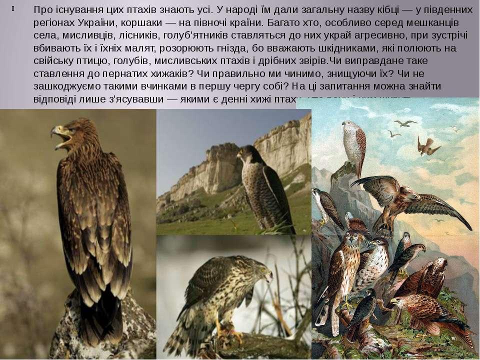 Про існування цих птахів знають усі. У народі їм дали загальну назву кібці — ...