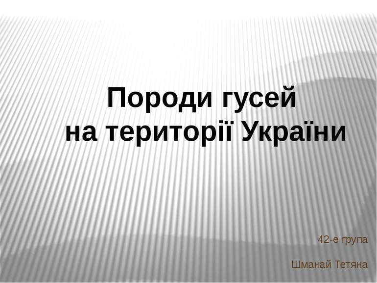 42-е група Шманай Тетяна Породи гусей на території України