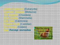 Домен:Еукаріоти(Eukaryota) Царство:Тварини(Metazoa) Тип:Хордові(Chordata) ...