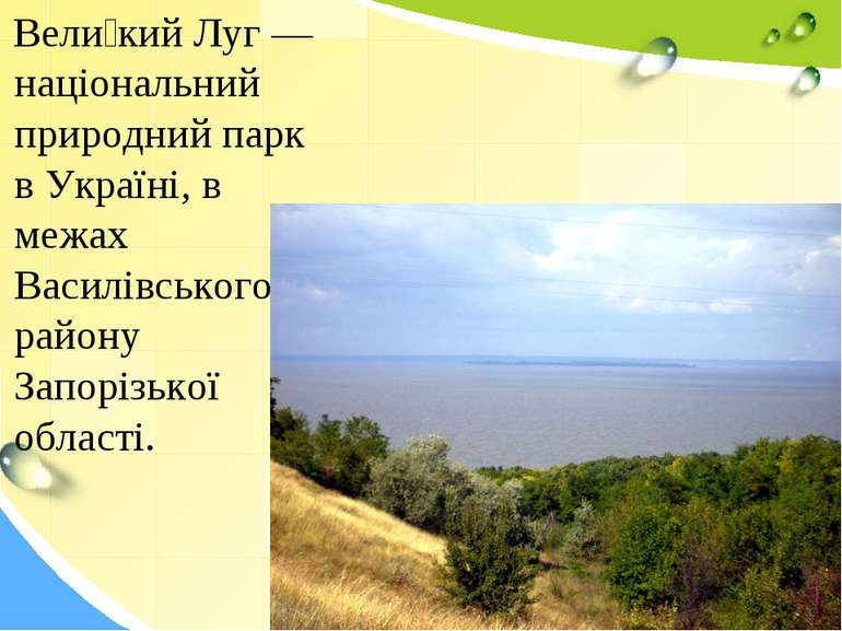 Вели кий Луг — національний природний парк в Україні, в межах Василівського р...