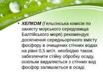 ХЕЛКОМ (Гельсінська комісія по захисту морського середовища Балтійського моря...