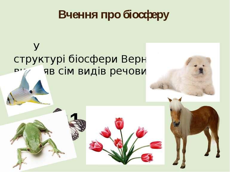 Вчення про біосферу У структурібіосфериВернадський виділяв сім видів речови...