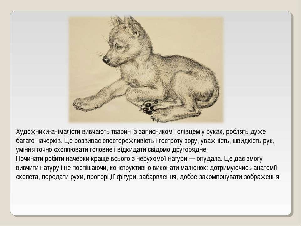 Художники-анімалісти вивчають тварин із записником і олівцем у руках, роблять...