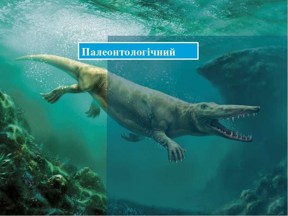 Палеонтологічний