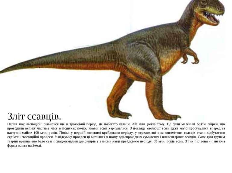 Зліт ссавців. Перші твариноподібні з'явилися ще в тріасовий період, не набага...