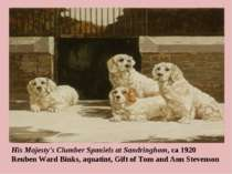 His Majesty's Clumber Spaniels at Sandringhom, ca 1920 Reuben Ward Binks, aqu...