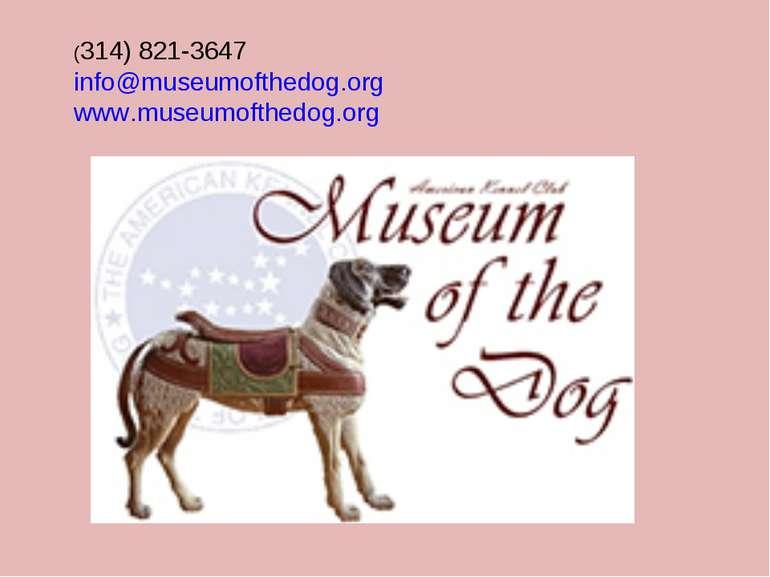 (314) 821-3647 info@museumofthedog.org www.museumofthedog.org
