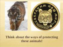 Think about the ways of protecting these animals!