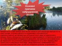 Використання Унави завжди мало велике значення для мешканців території по які...
