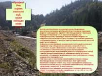 Професійна оцінка екоінспекції, щодо забруднення річки. Фастівська міжрайонна...