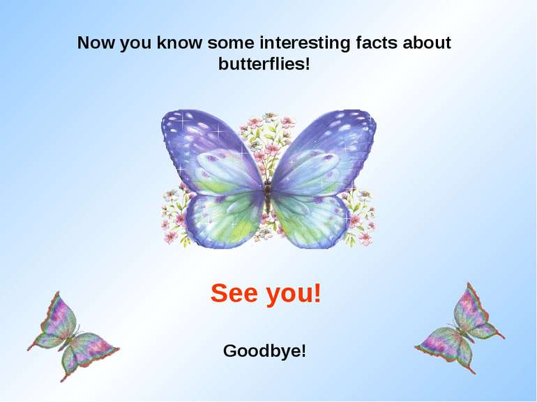 Now you know some interesting facts about butterflies! See you! Goodbye!