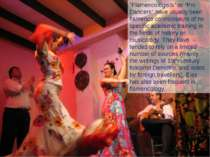 """Flamencologists"" or ""Pro Dancers"" have usually been flamenco connoisseurs of..."
