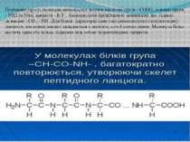 Порівняно прості молекули амінокислот містять кислотні групи - СООН, основні ...