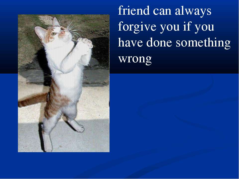 friend can always forgive you if you have done something wrong