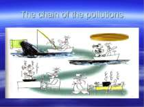 The chain of the pollutions