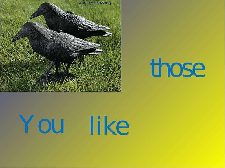 You like those
