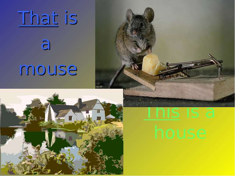 This is a house That is a mouse