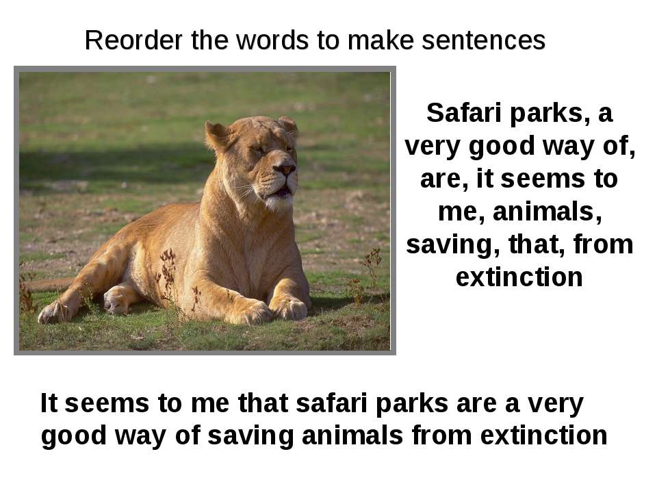Safari parks, a very good way of, are, it seems to me, animals, saving, that,...