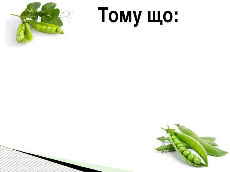Тому що: ◉ є багато сортів цієї культурної рослини ◉ її життєвий цикл досить ...