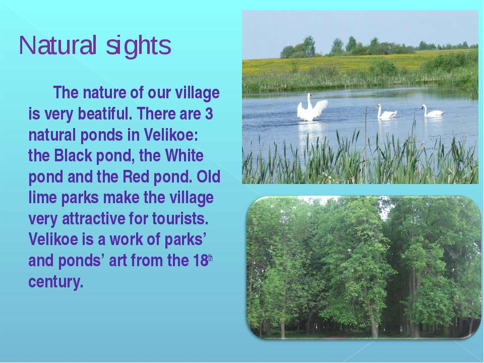 Natural sights The nature of our village is very beatiful. There are 3 natura...