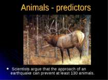 Scientists argue that the approach of an earthquake can prevent at least 130 ...