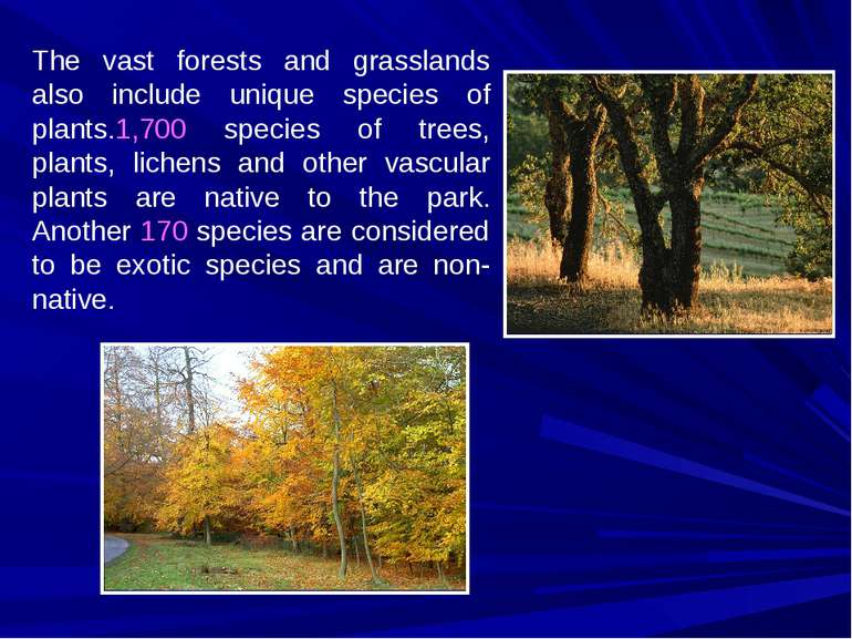 The vast forests and grasslands also include unique species of plants.1,700 s...