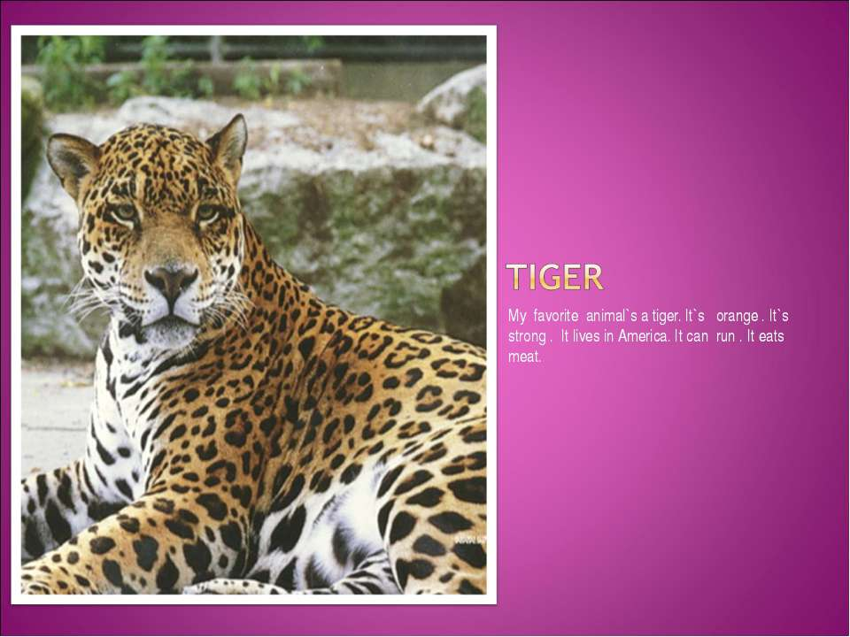 My favorite animal`s a tiger. It`s orange . It`s strong . It lives in America...
